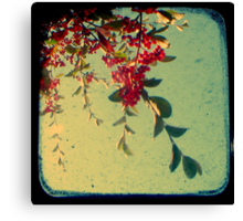 Good Morning - TTV Canvas Print