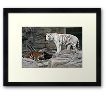 When worlds collide Framed Print