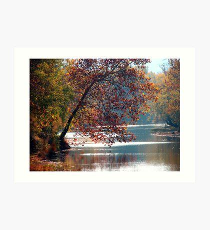 Tranquil Serenity Art Print
