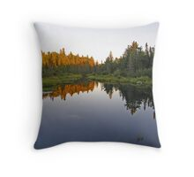 Northern Ontario #4 Throw Pillow