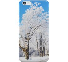 Frosted Landscape iPhone Case/Skin