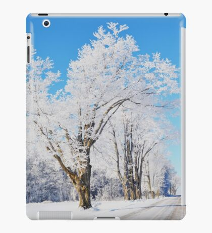 Frosted Landscape iPad Case/Skin