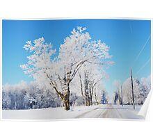 Frosted Landscape Poster