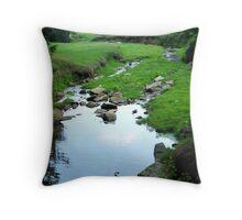 Crawling Creek Throw Pillow