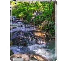 Nature Scene iPad Case/Skin