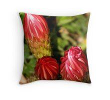 Cactus Bud Bud Bud Throw Pillow
