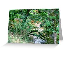 River Valley - The River Bank Greeting Card
