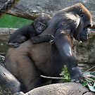 I'M HANGING ON MUM by Tracy King