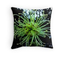 Sick Grevillea Throw Pillow