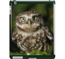 Whoooo are you looking at? iPad Case/Skin