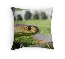 Austrelaps superbus Lowlands copperhead  Throw Pillow