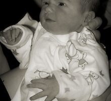 welcome to the world... by Wendy L Vandeven