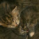 Sleep by jackco ching