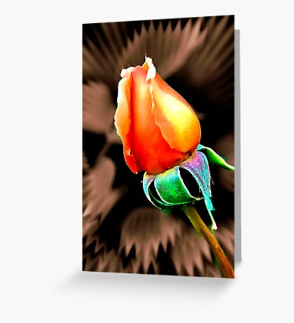 """'Tis the Last  Rose of  Summer."" Greeting Card"