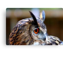Eurasian Eagle Owl (Side elevation) Canvas Print