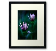 Colour Of Life XVI [Print & iPad Case] Framed Print