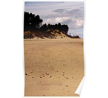Left-hand panel of Findhorn Bay triptych Poster