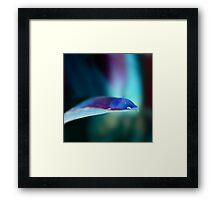 Colour Of Life XXVII Framed Print