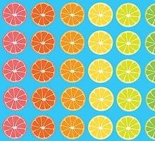 Citrus Rainbow  by MagnoliaStern