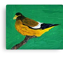 An Evening Grosbeak Canvas Print