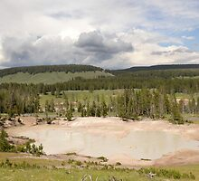 The Mud Geyser, Yellowstone National Park by Rekha Varghese