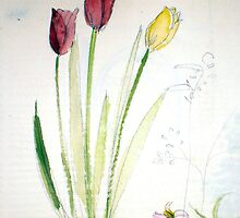 flower sketching by Rosa  D'Alessio