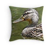 Cruisin' on the water Throw Pillow