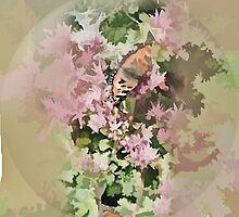 abstract of butterflies amongst the sedum by hilarydougill