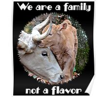 """""""We are a family, not a flavor"""" Poster"""