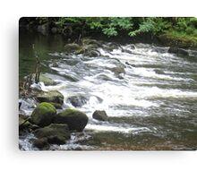 River Valley - Cataract Canvas Print