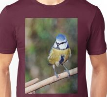 Re series published since the first time too bright ... !! 5  (c)(h) Birds by Olao-Olavia / Okaio Créations fz 1000 Unisex T-Shirt