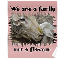 """""""We are a family, not a flavour"""" Poster"""
