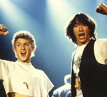 Bill and Ted's Excellent Adventure by Pamfakner