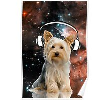 Space Yorkie Poster