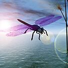 Dragonfly Dream by Keith Reesor