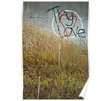 Try Love Poster