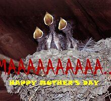 092347-1A  MOTHER'S DAY CARD by MICKSPIXPHOTOS