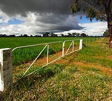 Farmland at Wangaratta by Darren Stones