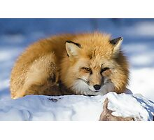 Foxy Redhead Photographic Print