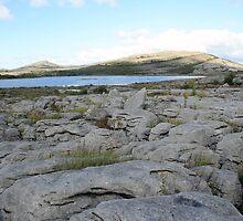 The Burren by John Quinn