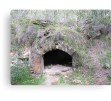 A beehive coke oven intact! Newnes ruins, New South Wales. Canvas Print