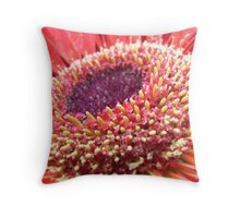 Gerbera Macro Throw Pillow