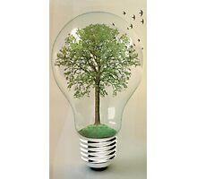 green ideas 02 Photographic Print