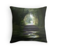 Abstract of our walk today Throw Pillow