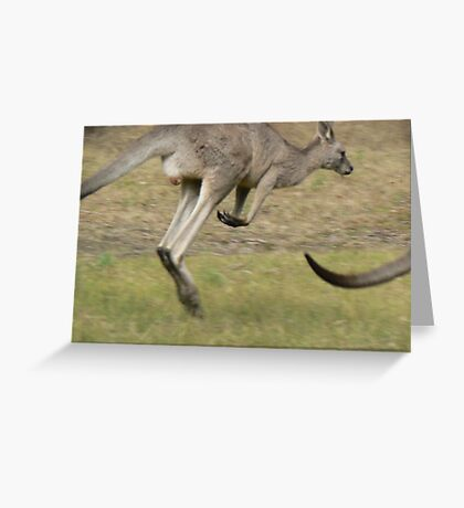 Hopping Kangaroo  Greeting Card