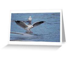 Safe Landing Greeting Card