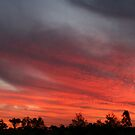 Sunset at Garah panorama by Michael Matthews