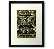 Sheba's Fortune Framed Print