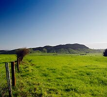 New Zealand Countryside by Robert Scammell
