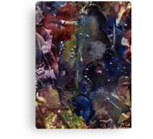 The Shore of the Cosmic Ocean Canvas Print